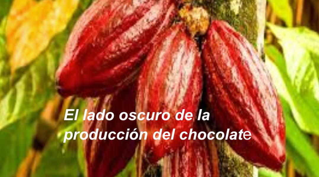 Progetti in lingua spagnola sc. secondaria