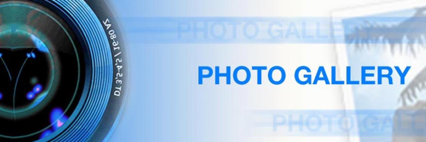 Photo Gallery (Picasa)